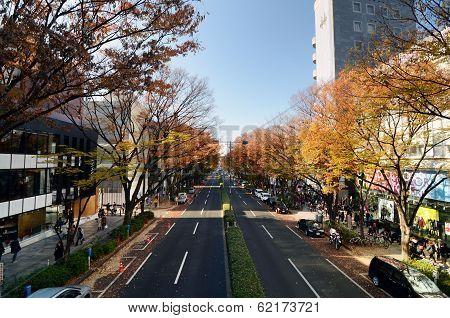 Tokyo - Nov 24: People On Omotesando Street