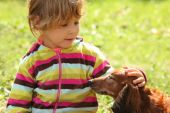 little girl caress dachshund outdoor, summer day poster