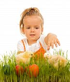 Little girl reaching for the eatser eggs and little spring chickens - isolated poster