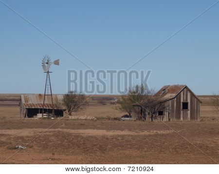 An Abandoned Homestead