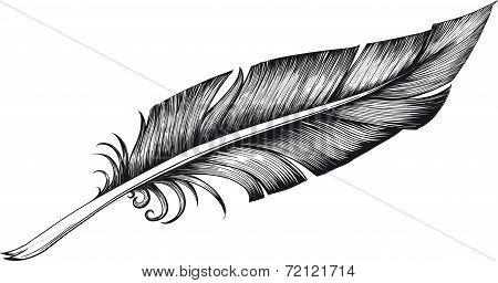 quill pen