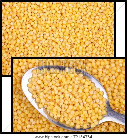 Millet. Two Photos For The Background