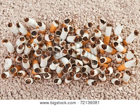 Cigarettes Rectangle From Above