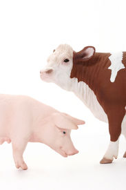 Toy Cow And Pig