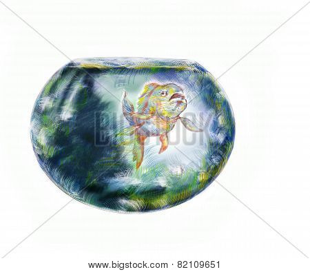Fish And Fishbowl