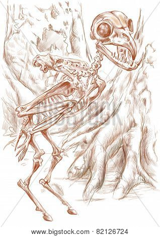 Legendary Animals And Monsters: Harpy