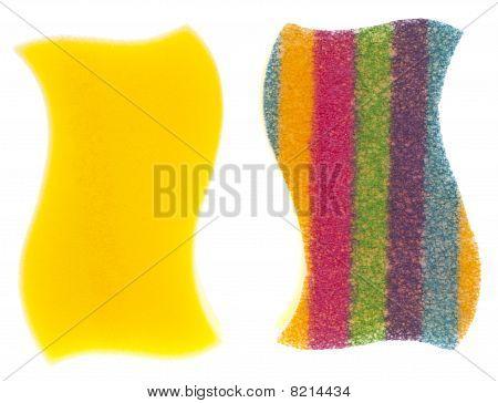 Vibrant Striped Sponge