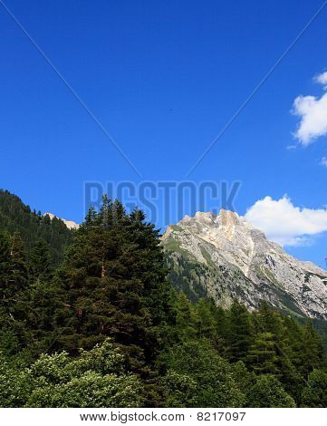 Austrian Alps (portrait)