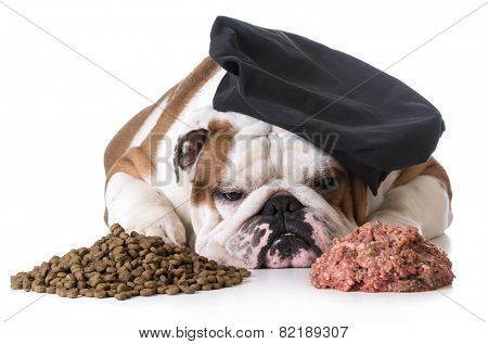dog food debate - bulldog chef laying between pile of kibble and raw dog food