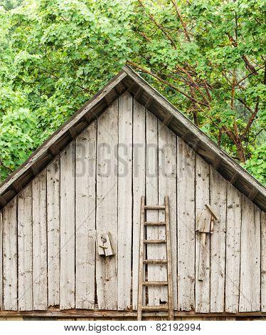 Old broken bird houses