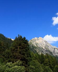Austrian Alps (portrait)