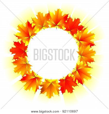 Round Frame Of Yellow Maple Leaves
