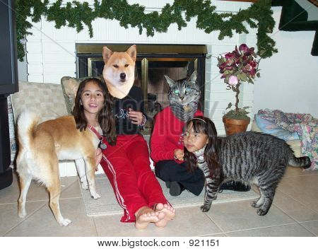 poster of head of dog and cat switched with heads of girls.
