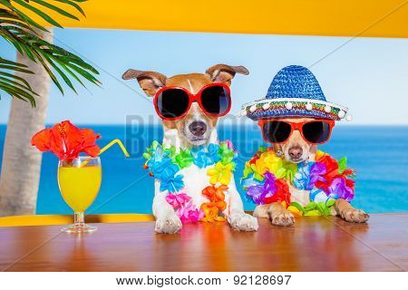 Drunk Cocktail Dogs