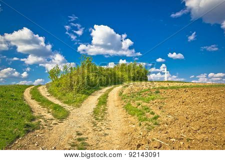 Countryside Path Intersection View In Green Nature