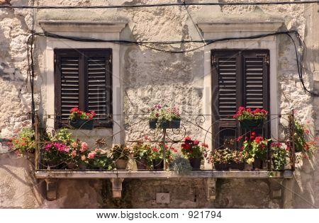 Old Windows In Croatia