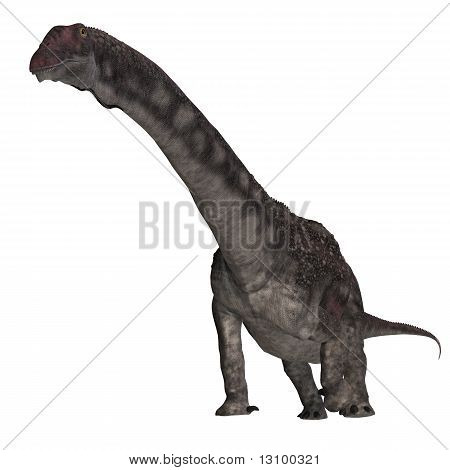 Dinosaur Diamantinasaurus. 3D rendering with clipping path and shadow over white poster