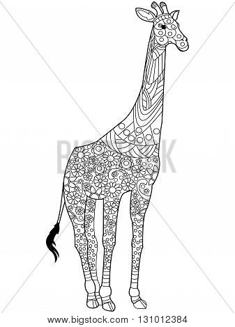 Giraffe coloring book for adults vector illustration. Anti-stress coloring for adult. Zentangle style. Black and white lines. Lace pattern