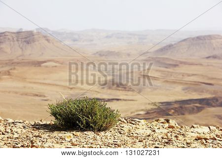 Negev desert and Ramon crater in Israel.