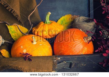 Assortment of bright orange edible pumpkins and in a vintage suitcase with linen napkin and autumn leaves. Dark rustic style selective focus toned.