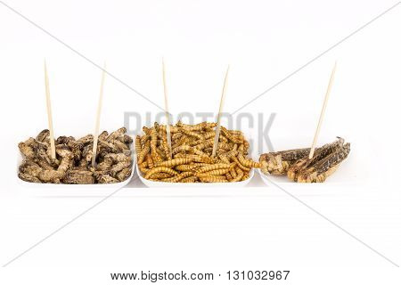 Fried crickets locust molitor insects, food of future rich protein France
