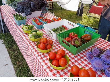 Colorful display of organic produce at Farmers Market