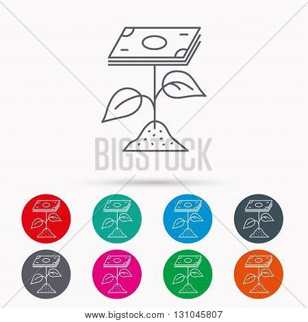 Profit icon. Money savings sign. Flower with cash money symbol. Linear icons in circles on white background.