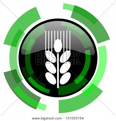 grain icon, green modern design glossy round button, web and mobile app design illustration