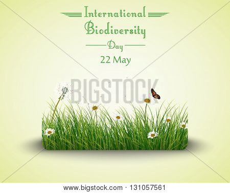 Vector illustration of Green grass with flowers and butterflies isolated background for Biodiversity international day