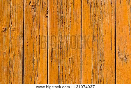 Painted natural wood board background texture. Closeup
