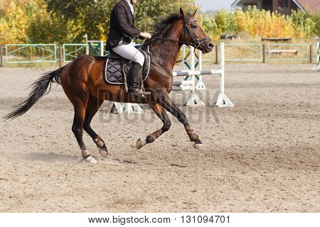 A Horse Rider In Equestrian Jumping Competition