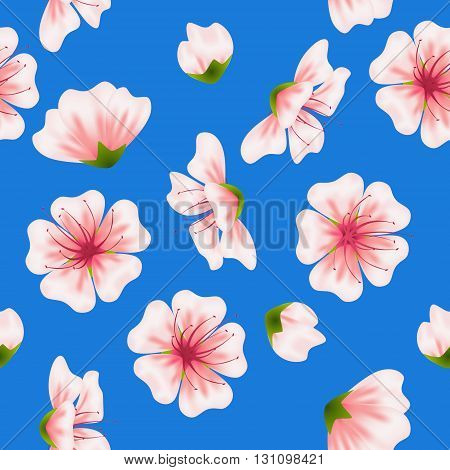 Vector seamless sakura blue pattern. Realistic floral asian design for invitation greeting wedding cards websites brochures booklets in japanese style. Hanami festival spring flowers