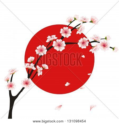 Vector sakura branch flag. Realistic floral asian design for menu invitation greeting wedding cards websites brochures booklets in japanese style. Hanami festival flowers
