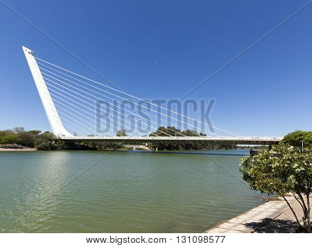 Seville, Spain - May 1, 2016: The Alamillo bridge crossing Canal de Alfonso XIII, a cantilever spar cable-stayed bridge designed by architect Santiago Calatrava for EXPO 1992.