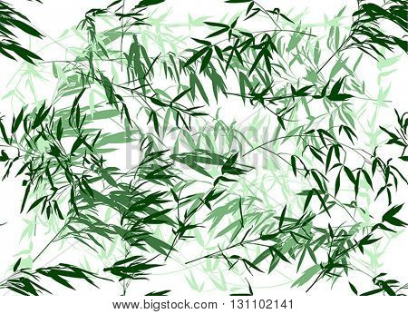 illustration with bamboo isolated on white seamless background