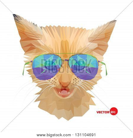 Cat Mr. Cat- portrait red fashion kitten in sunglasses hipster urban style. Funny animals sketch for print and design for books cards cartoons t-shirts. Agent Red Cat collection.