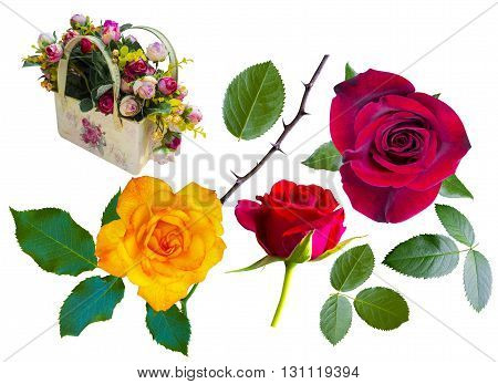 Roses. Red roses. Yellow roses. Basket with roses. Basket with roses isolated on white background. Flowers roses isolated on white background. Flowers roses.