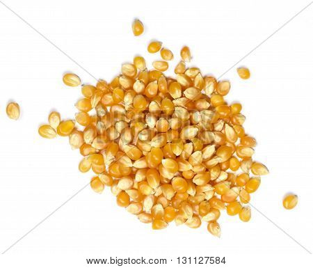 Corn or Popcorn, isolated on white background.