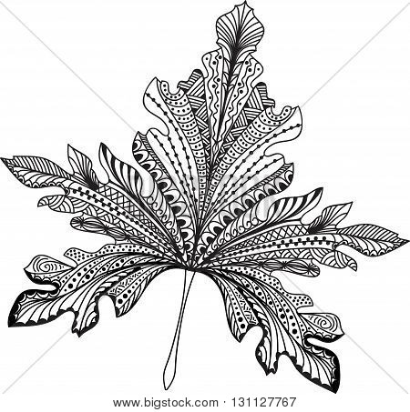 Doodle textured leaf background. Hand drawn illustration.