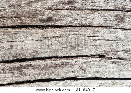 Old wood texture with pattern Detailed structure of wood texture with pattern and abstract natural black and white wood texture with pattern Abstract wood texture and pattern for design