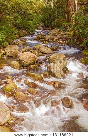 Caldera River Near Boquete City In Panama