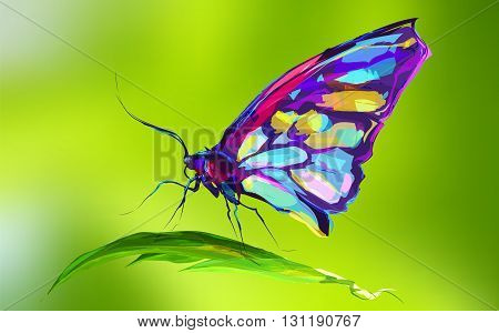 The butterfly on green background. Retro design graphic element. This is illustration ideal for a mascot and tattoo or T-shirt graphic. Stock illustration