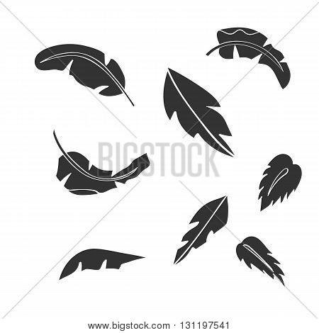 Banana leaves. Banana vector. Banana eps. Banana icon. Banana logo. Banana art. Banana web. Banana tall. Banana big. Banana ui. Banana flat. Banana isolated. Banana silhouette. Banana tree. Banana www