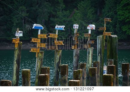 Bird Houses atop cement pilings at Tod Inlet.
