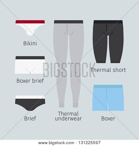 Man underwear. Various men underwear like boxer and brief, bikini and thermal underwear vector illustration