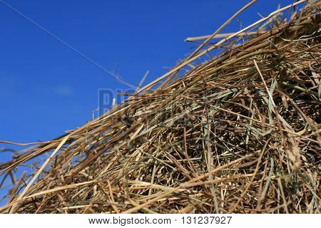 Conceptual shot of a stack of straw and the blue sky illustrating agriculture and autumn concepts