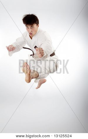 Portrait of a styled professional model. Theme: sport oriental martial art.