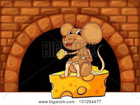 Mouse eating cheese in the house illustration