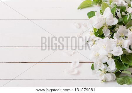 Spring / summer background. Wooden background with apple blossoms and copy space for text