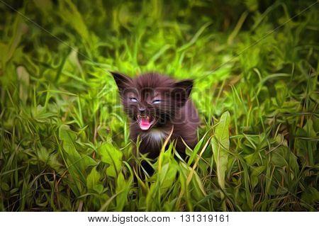 Fretting kitten in the grass - mixed media - digitally altered